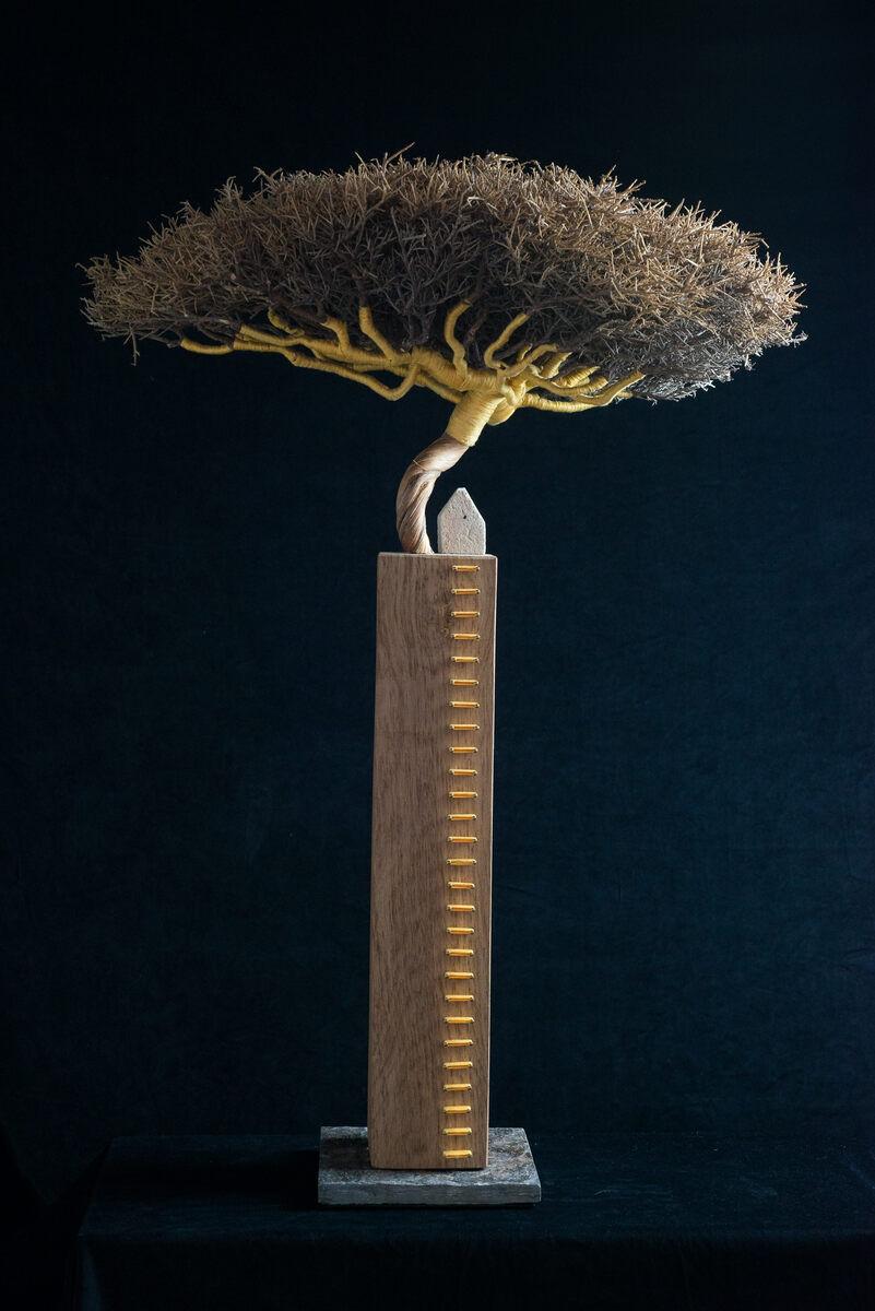 AMA, beelden  'Schaduwen'  'Schaduwen', ironbush/eik/borduurgaren, 90x65x60 cm.,1700