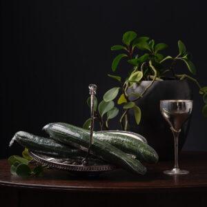 Ursula, Cucumber , foto op dibond