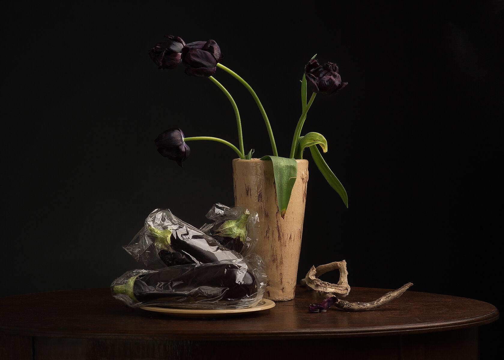 gvv, Ursula  'Eggplant foto op dibond'  foto op dibond