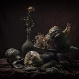Ursula, 'Turnip rooted celery' , foto op dibond